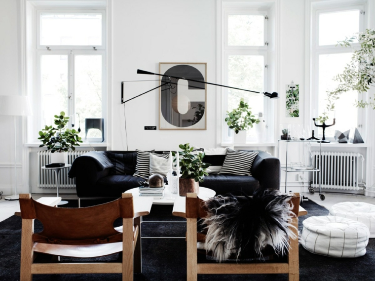 sofa-color-black-style-living room