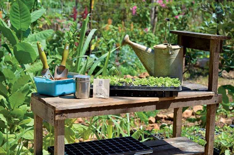the-garden-home-vegetables-options
